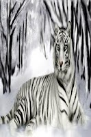Screenshot of White Tiger HD Wallpaper