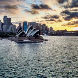 Sydney Opera House by Nancy Merolle - Buildings & Architecture Public & Historical ( skyline, sunset, australia, sydney opera house, opera house, dusk, sydney )