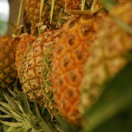 pineapple by Eki Tessar - Food & Drink Fruits & Vegetables ( indonesia, food, fruits, pineapple, nikon )