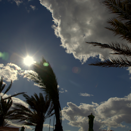 Clouds over the Palms by John Meadows - Landscapes Cloud Formations ( holiday, clouds, sky, palm trees, landscape )