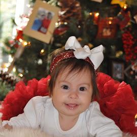 Christmas Baby by Donna Cole - Babies & Children Child Portraits ( drcole705@yahoo.com,  )