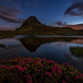 by Luca Mondini - Landscapes Mountains & Hills ( water, wilderness, stars, dark, night, lake, sunrise, flowers, alps,  )