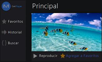 Screenshot of Reproductor de Video CatPlayer