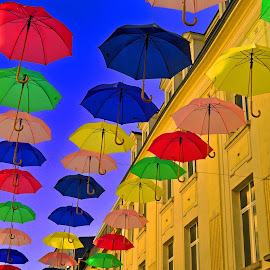 Umbrellas In The City 6 by Marco Bertamé - City,  Street & Park  Street Scenes ( umbrellas, colorful,  )