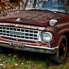 International by Lowell Griffith - Transportation Other ( siren, truck, international, rust )