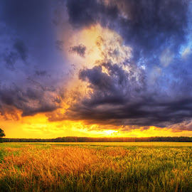 Hungarian skies pt.140. by Zsolt Zsigmond - Landscapes Cloud Formations ( clouds, sky, tree, colors, sunset, meadow, plain, panorama )
