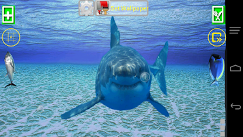 Screenshot of Angry Shark Pet Cracks Screen