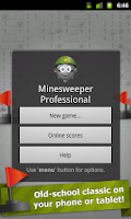 Screenshot of Minesweeper Professional