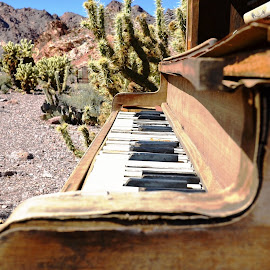 by Dee Schindler VanBilliard - Artistic Objects Musical Instruments ( musical instrument, desert, piano )