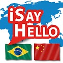 Portuguese (Brazil) - Chinese