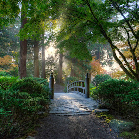 Portland Japanese Garden by Chris Bartell - Landscapes Travel ( bushes, sun shone, green, fall, trees, rock, bridge, sun, , color, colorful, nature, path, landscape, mood factory, vibrant, happiness, January, moods, emotions, inspiration, Earth, Light, Landscapes, Views, relax, tranquil, relaxing, tranquility, #GARYFONGDRAMATICLIGHT, #WTFBOBDAVIS )