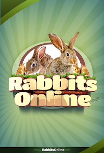 Rabbit Forum - screenshot