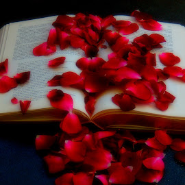 The Book of Love by DeDe PalmerWells - Artistic Objects Still Life ( love, words, petals, book, soft )