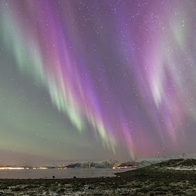 Aurora purple by Benny Høynes - Landscapes Starscapes ( northern lights, aurora borealis, nights, arctic, norway )