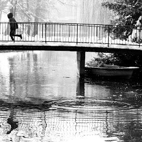 parallels .. by Dubravka Bednaršek - City,  Street & Park  City Parks (  )