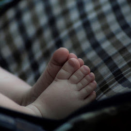 Baby Toes by Stuart Alexander - Babies & Children Hands & Feet ( love, feet, toes, baby, cute, boy )