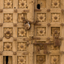 Carved Wooden Door and Lock by Janet Marsh - Buildings & Architecture Architectural Detail ( indiapart1, carved wooden door,  )