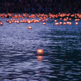 Lantern Floating 1 by Leah Varney - News & Events US Events ( water, news, events, people, ocean view )