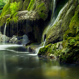 Just whispers - Bigar waterfall  by Flavian Savescu - Nature Up Close Water (  )