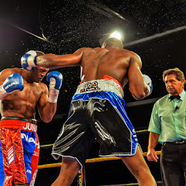 Leather meets head by Alexius van der Westhuizen - Sports & Fitness Boxing ( junior makabu, lounge, eric fields, sport, boxing, emperor's palace, sportsbar, bar )