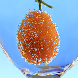 Kumquat by Besnik Hamiti - Food & Drink Fruits & Vegetables ( kumquat )