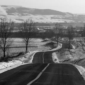 winding road by Cosmin Popa-Gorjanu - Black & White Landscapes ( winter, village, snow, road, black&white )