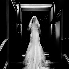 The dress by Steven Dungate - Wedding Bride