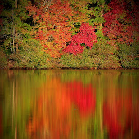 Chanoa Lake, Bell County Ky by Paul Mays - Landscapes Waterscapes
