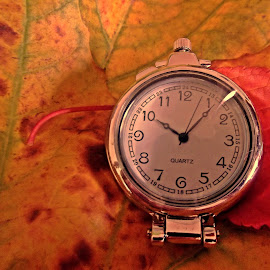 It is fall time by Ciprian Apetrei - Artistic Objects Other Objects ( watch, artistic object, brittany, leaves, close up,  )