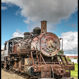Rusty by Tony Roma - Transportation Trains ( illinois, train, museum, rust, graveyard )