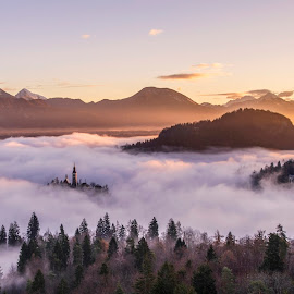 Church on the Island in Misty Sunrise by Aleš Krivec - Landscapes Mountains & Hills ( water, mountains, winter, church, beautiful, bled, castle, lake, mist, island )