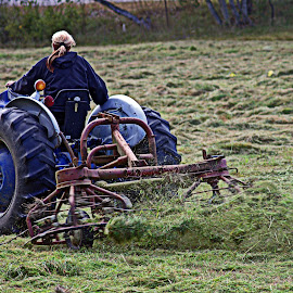 Cutting Time by Catherine Melvin - Landscapes Prairies, Meadows & Fields ( blades, farming equipment, busy, mowing, tractor,  )
