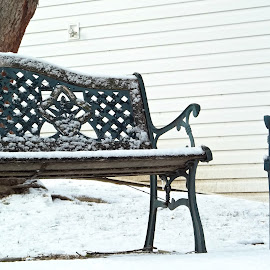 Snowy Benches by Morgan Berk - Artistic Objects Furniture ( winter, cold, bench, snow, white )