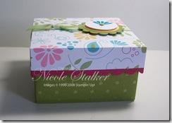 Petals & Paisley 3 x 3 Origami Box