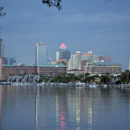 Downtown Tampa Bay by Mary Beth Schepper - Buildings & Architecture Office Buildings & Hotels ( riverside, buildings, reflections )