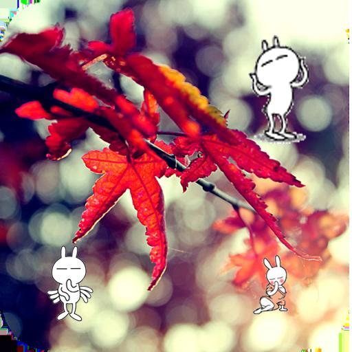 楓葉飄落-動態壁紙 個人化 LOGO-玩APPs