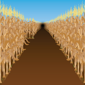 Corn Mazes icon
