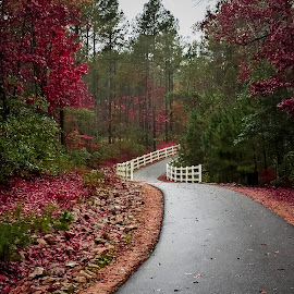The Road Ahead by Lou Plummer - Instagram & Mobile iPhone ( iphone,  )