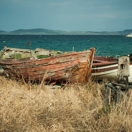 old small fishing boats by Miljan Jovanovic - Transportation Boats ( old, blue, sea, beach, boat )