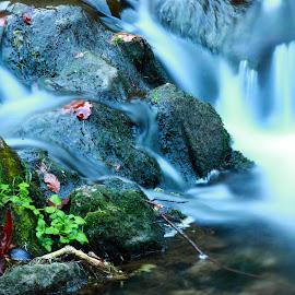 by D.l. Randolph - Landscapes Waterscapes