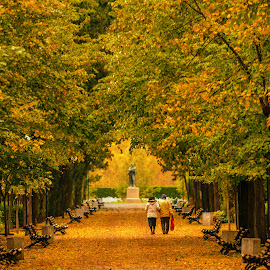 Autumn by Alexander Stoyanov - City,  Street & Park  City Parks ( benches, park, autumn, trees, leaves, people )