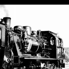 by Cindy De Kuyper - Transportation Trains
