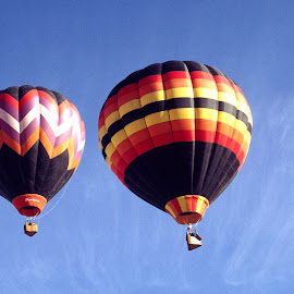 Hot Air Baloonns almost twins. by Walter Carlson - Transportation Other ( sky, albuquerque, festival, air, balloons hot )