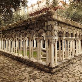 Chiostro di Sant'Andrea by Dražen Komadina - Buildings & Architecture Public & Historical ( chiostro di sant'andrea, liguria, genoa, italy )