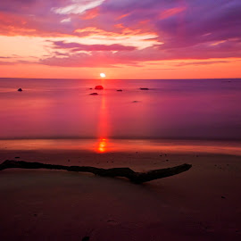 Another day gone by Avinash Jain - Landscapes Sunsets & Sunrises ( hirtshals, sunset, beach, denmark, avinash photography, dusk )