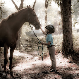 enchanted by Alia Bostaji - Animals Horses