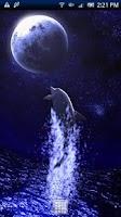 Screenshot of Dolphin Moon Trial