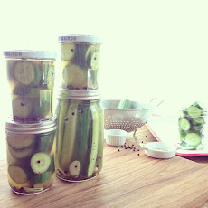 Homemade Garlic Dill Cucumber Pickles