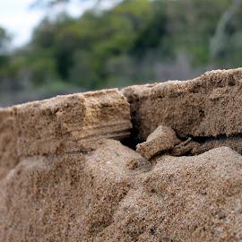 Beach by Helen Beggs - Nature Up Close Sand ( sand, beaches, cracks, erosion, beach )