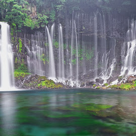 Shiraito Falls, Japan by Christopher Harriot - Landscapes Waterscapes ( japan, nature, greenery, waterfall, shiraito )